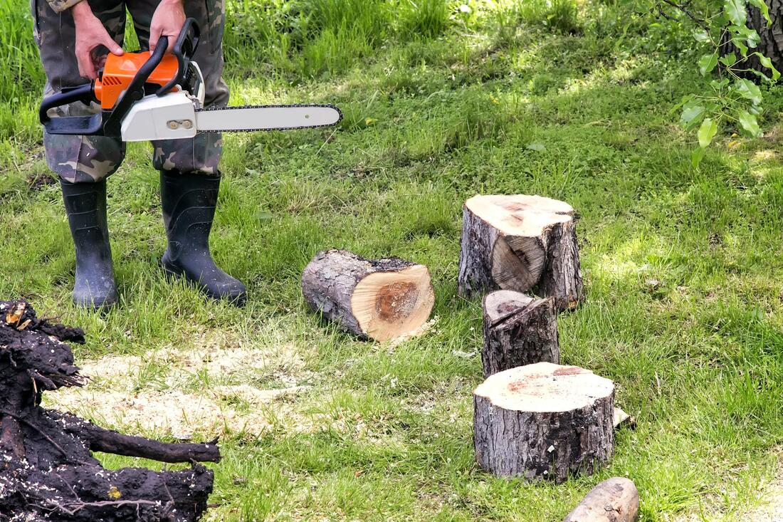 Tree Service-Dallas TX Landscape Designs & Outdoor Living Areas-We offer Landscape Design, Outdoor Patios & Pergolas, Outdoor Living Spaces, Stonescapes, Residential & Commercial Landscaping, Irrigation Installation & Repairs, Drainage Systems, Landscape Lighting, Outdoor Living Spaces, Tree Service, Lawn Service, and more.